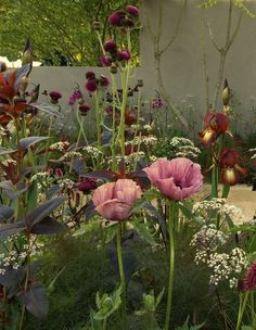 RHS Chelsea Show 2007 designed by sarah price rich palette of purples, golds, browns, whites.