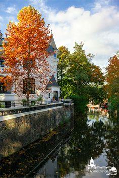 Hamburg im Herbst - schöne bunte Farben und schon hat man gute Laune  www.heimathafen-aktuell-hamburg-