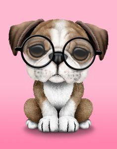 Cute English Bulldog Puppy Wearing Glasses on Pink | Jeff Bartels