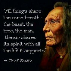 This is one of my favorite quotes from Chief Seattle.♥