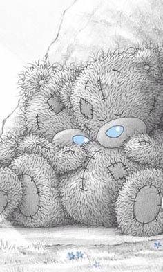 Ositos tiernos duermiendo- Blue Nose