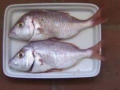 o cozinheiro este algarve: Fish of the day