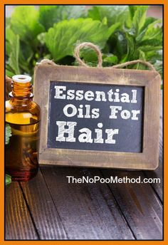 Essential Oils For Hair - TheNoPooMethod.com