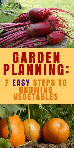 Garden Planning: 7 Easy Steps to Growing Vegetables