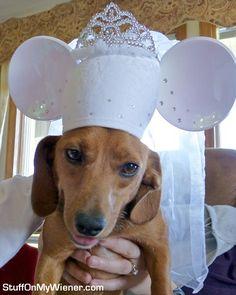 Betsy dreams of a fairy tail Disney wedding