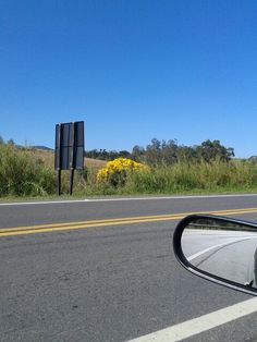 Flores da estrada
