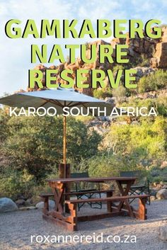 Fossil Ridge eco-lodge in the Gamkaberg: a perfect spot - Roxanne Reid Free Music Download Sites, All About Africa, Knysna, Wildlife Safari, Slow Travel, Nature Reserve, Africa Travel, How To Fall Asleep, Fossil