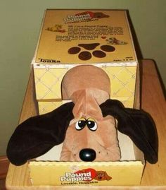 Pound puppies! I remember  getting one for Christmas  one year..it was my favorite  toy for years!