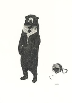 Another bear