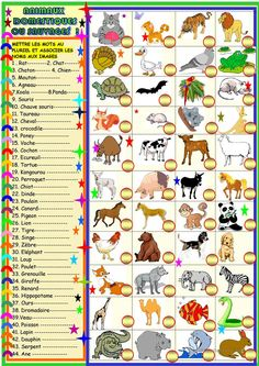 1 Worksheets Animals Must Fit In Printable Worksheets Animals Must Fit In My Beloved Animals Plurals and Matching English Esl √ Worksheets Animals Must Fit In . 1 Worksheets Animals Must Fit In . My Beloved Animals Plurals and Matching English Esl in