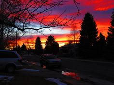 Upload your best weather photos or watch them in our searchable gallery. Weather Network, Beautiful Landscapes, Celestial, Sunset, Gallery, Outdoor, Sunsets, Outdoors, Outdoor Games