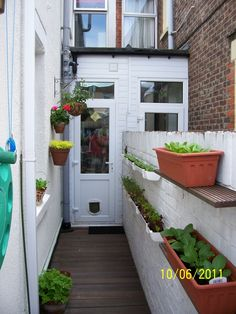 Rain gutters for salad and shelves for containers on walls.