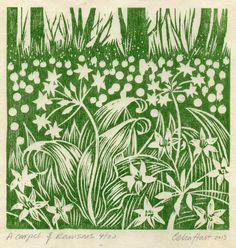 'A carpet of Ramsons' - Celia Hart