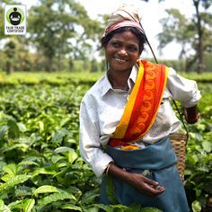 Behind every cup of #tea there is a person. Remember as you enjoy your favorite warm drink! #FairTrade
