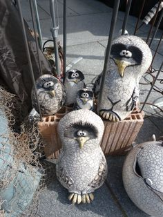 my biggest owls