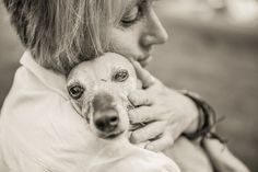 5 Pro Tips for Senior Pet Photography - includes professional tips and instructions on how to get the best photos of older pets, blind or deaf dogs, and the best locations, light and layouts to use.   Pretty Fluffy   www.prettyfluffy.com