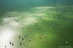 Blue Ribbon Sailing Championship, Lake Balaton, Hungary