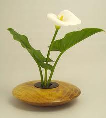 ikebana calla and hosta leaves