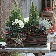 26 Christmas Garden And Patio Decoration Ideas Christmas Planters, Christmas Arrangements, Outdoor Christmas Decorations, Christmas Centerpieces, Holiday Decor, Christmas Flowers, Christmas Wreaths, Christmas Crafts, Country Christmas