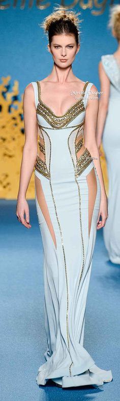 Amazing Cut Out Gown Chain Detail -Mireille Dagher Spring 2014 HC