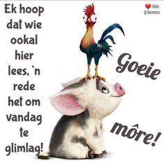 Afrikaans Language, Goeie More, Good Morning Wishes, Animals, Mornings, Animales, Animaux, Afrikaans, Acre