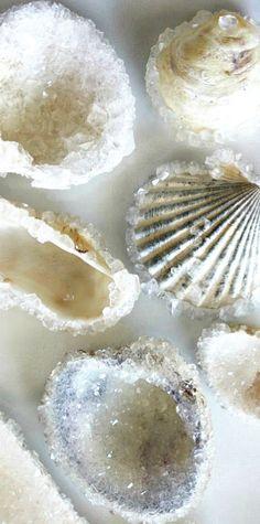 How to make Crystal Sea Shells
