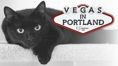 Help animals in need and experience Vegas – Portland-style during evening  of gaming, auctions, appetizers, drinks and desserts. At World Forestry  Center -Details/tickets AnimalAidPDX.org.