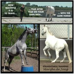 Enjoy your own path with your own horse!
