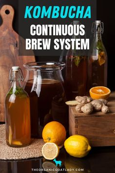 Do you need an easier way to make your favorite kombucha? Continuous brew kombucha is the best choice! It's easy to make and makes the best-tasting kombucha ever. Learn my favorite tips and tricks to using the kombucha continuous brew system to make amazing tasting kombucha! Best Kombucha, Kombucha Tea, Continuous Brew Kombucha, Recipes For Beginners, Brewing, Good Things, Homemade, Make It Yourself, It's Easy