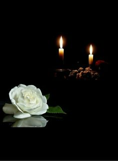 Cute Good Night, Good Night Image, Candle Light Images, Romantic Candles, Candle In The Wind, Black And White Flowers, Candels, Scrapbook Templates, Black Wallpaper