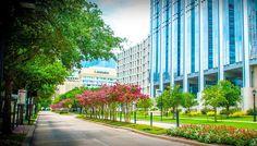 Elan Medical Center Furnished Apartments | Houston Medical Center ...
