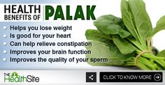 Click on the picture to know more! #Health #HealthBenefits #Spinach Spinach Health Benefits, Relieve Constipation, Fruits And Vegetables, Improve Yourself, Lose Weight, Thoughts, Healthy, Fruits And Veggies, Health