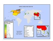 2002–2004 SARS outbreak - Wikipedia Secondary School, Primary School, Medical Conferences, Travel Advisory, Intensive Care Unit, School Closures, Timeline, Singapore, Death