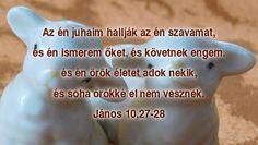 János 10,27-28