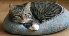 Hand felted cat bed