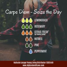 Do you want to feel ENERGIZED and whiz through your To-Do list? Then this blend is for you! Carpe Diem my dears!