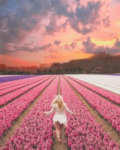 10 Unique Flower Locations in Europe for Spring - Charlies Wanderings Tulip Fields Netherlands, Holland, Europe Spring, All The Bright Places, Wild Poppies, Blossom Trees, Unique Flowers, Amazing Destinations, Travel Destinations