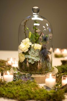Cloche design with succulent, lisianthus, montbreesia pods, thistle, mushroom and moss. Flower credit| Nancy Saam Flowers Photo Credit| Joanne Bening