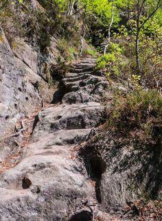 Rotkehlchenstiege bei Schmilka. Eine 760 Meter lange Felsentreppe im Elbsandsteingebirge direkt an der Elbe vor der tschechischen Grenze, 27 km von Pirna . . . . . Stony Stairway in the Elbe Sandstone Mountains in Sachsen, Germany - Saxon Switzerland