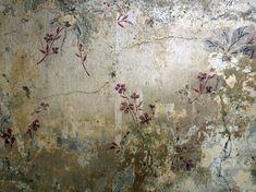 delicate flowers - © Debi Treloar wallpaper