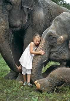 When portrait photographer Robin Schwartz took her then 3-year-old daughter to the circus, she never expected the toddler to fall in love.That encounter inspired Schwartz to continue photographing the ways her daughter, now 15, bonds with animals.