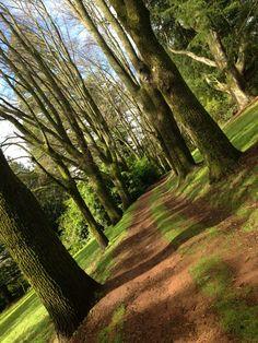 Daylesford, Wombat, Country Roads, Beautiful