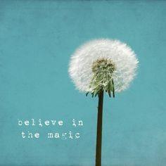 Believe in the magic  8x8 whimsical dandelion by SusannahTucker, $30.00