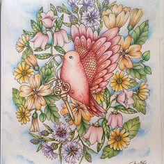 Flores, pássaro... #prismacolor #blomstermandalacoloringbook