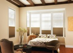 Cellular Shades : Also known as Honeycomb/ Accordion style. Modern & contemporary style. Most energy efficient window coverings available today. Available with features like cordless, room darkening, top down-bottoms up, motorized etc.