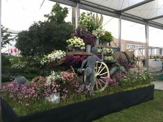 Flowers from the farm rhs chelsea 2018
