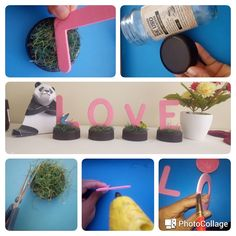 Planter Pots, Formal, Preppy