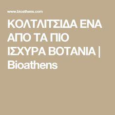 ΚΟΛΤΛΙΤΣΙΔΑ ΕΝΑ ΑΠΟ ΤΑ ΠΙΟ ΙΣΧΥΡΑ ΒΟΤΑΝΙΑ | Bioathens Athens