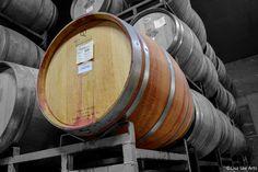 Wine tasting in Napa Valley #LisaLeeArts