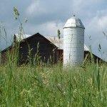Eight Mile Creek Farm http://eightmilecreekfarm.com/